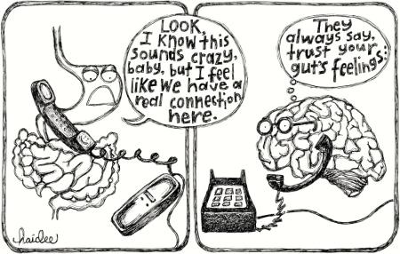 brain-gut-1000x637-1431487346